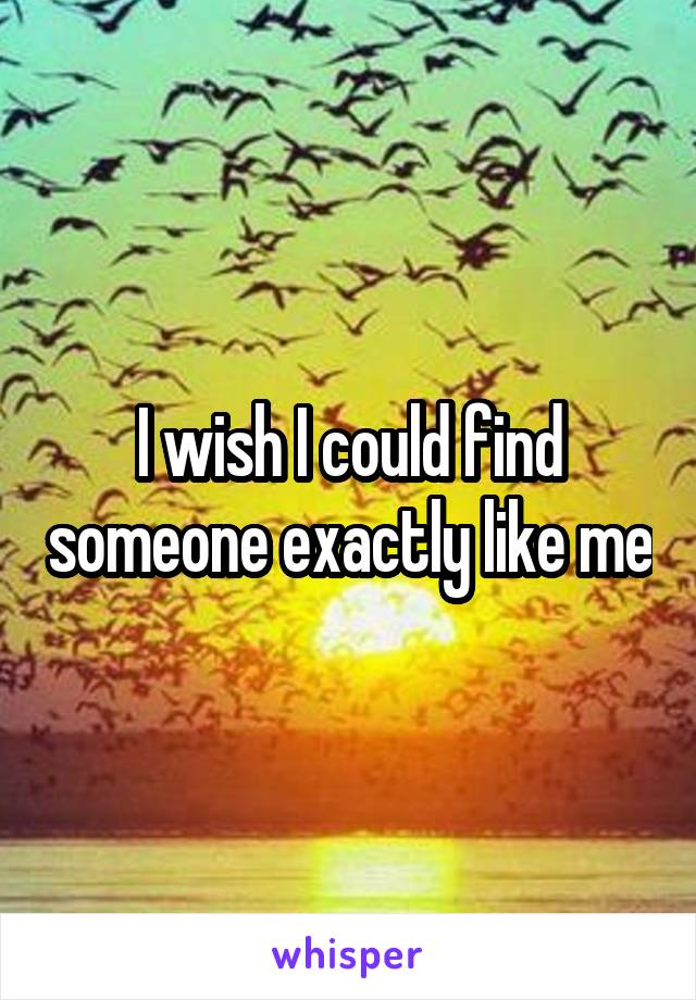 I wish I could find someone exactly like me