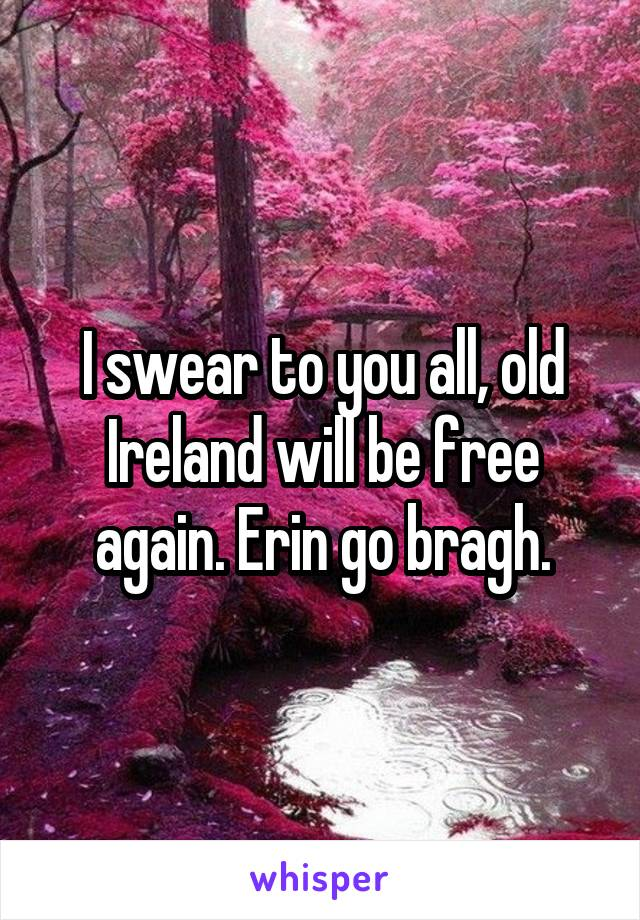 I swear to you all, old Ireland will be free again. Erin go bragh.