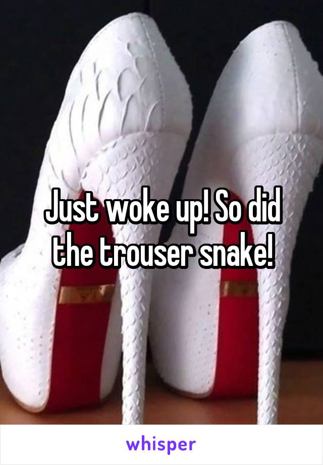 Just woke up! So did the trouser snake!