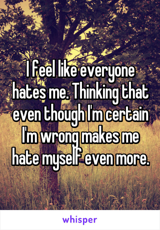 I feel like everyone hates me. Thinking that even though I'm certain I'm wrong makes me hate myself even more.