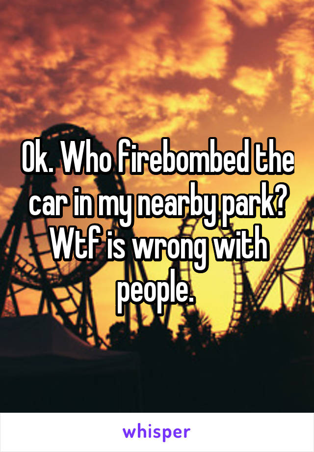 Ok. Who firebombed the car in my nearby park? Wtf is wrong with people.