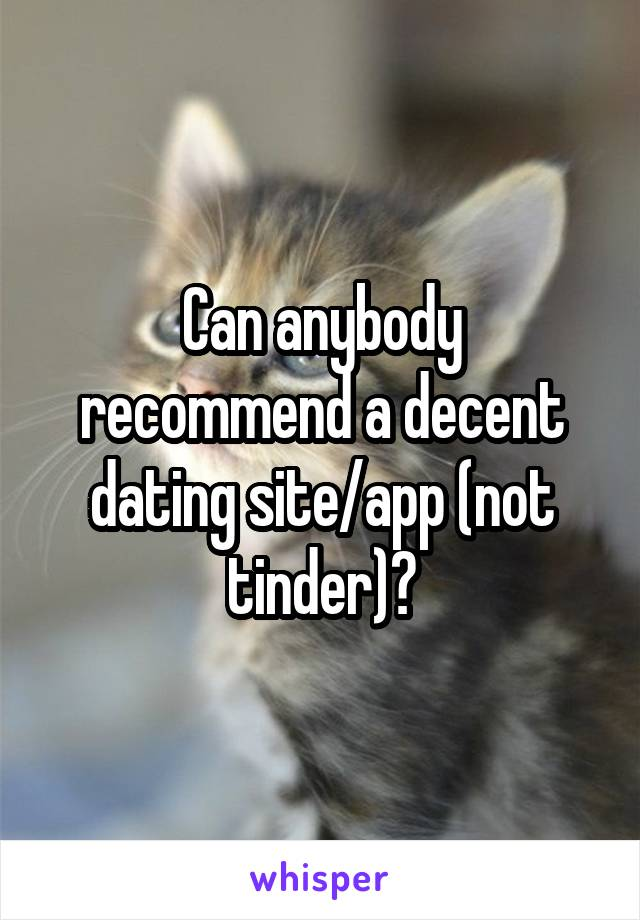 Can anybody recommend a decent dating site/app (not tinder)?