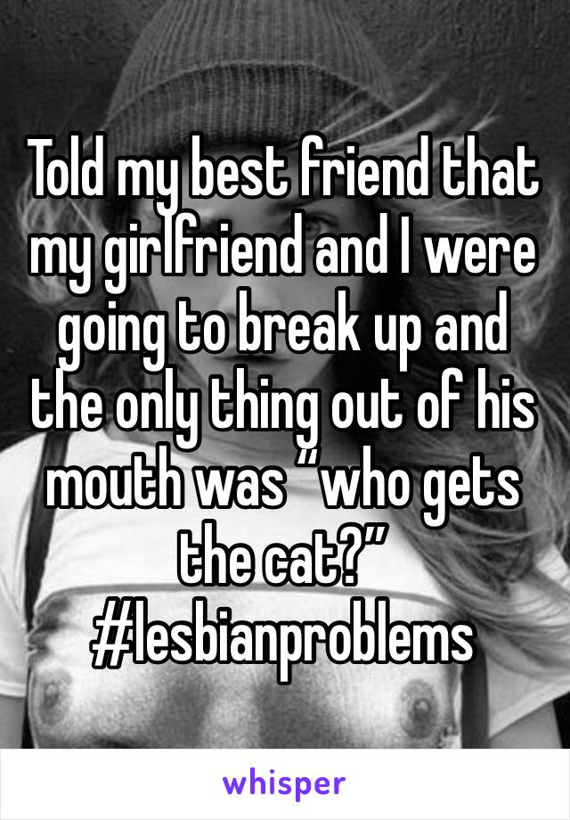 "Told my best friend that my girlfriend and I were going to break up and the only thing out of his mouth was ""who gets the cat?"" #lesbianproblems"