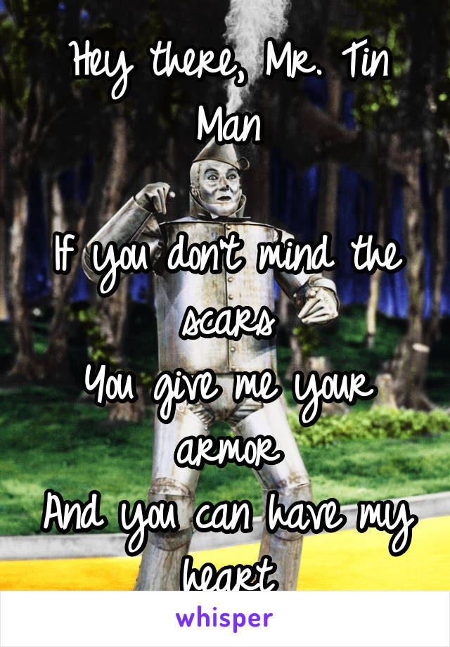 Hey there, Mr. Tin Man  If you don't mind the scars You give me your armor And you can have my heart