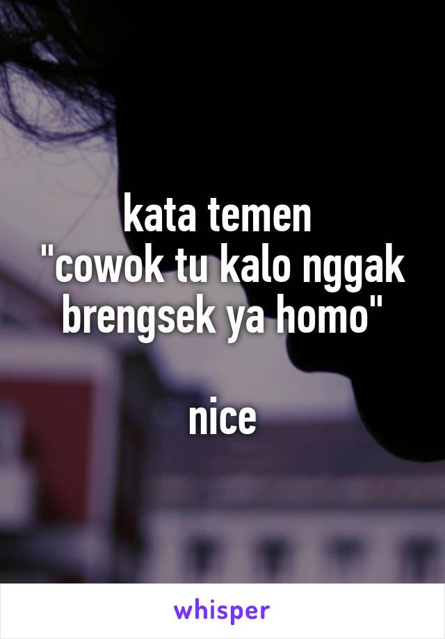 """kata temen  """"cowok tu kalo nggak brengsek ya homo""""  nice"""