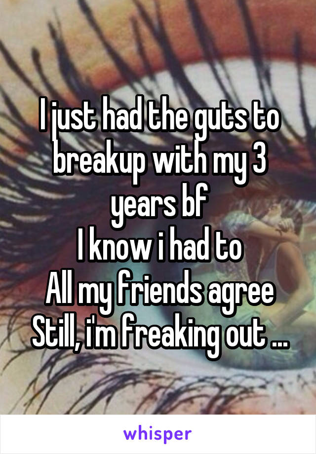 I just had the guts to breakup with my 3 years bf I know i had to All my friends agree Still, i'm freaking out ...