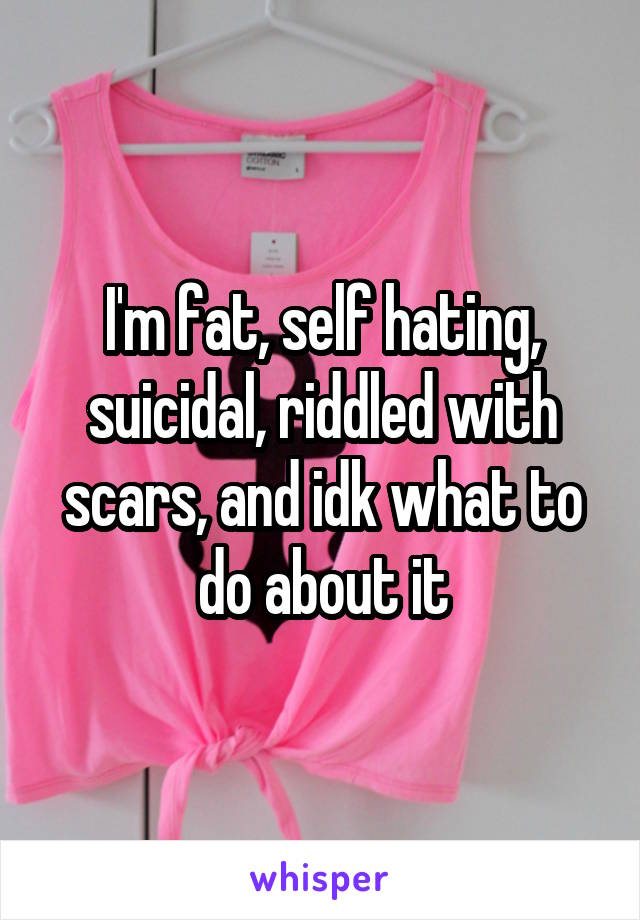 I'm fat, self hating, suicidal, riddled with scars, and idk what to do about it