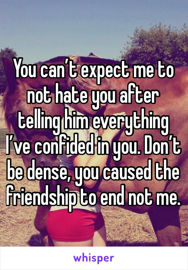 You can't expect me to not hate you after telling him everything I've confided in you. Don't be dense, you caused the friendship to end not me.
