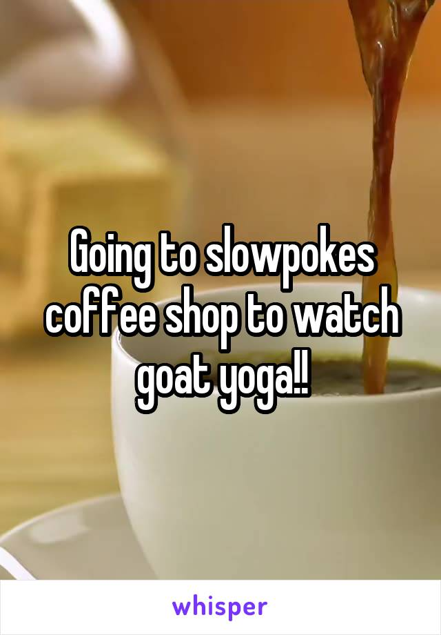 Going to slowpokes coffee shop to watch goat yoga!!