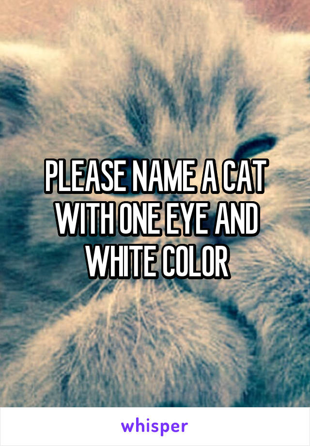 PLEASE NAME A CAT WITH ONE EYE AND WHITE COLOR