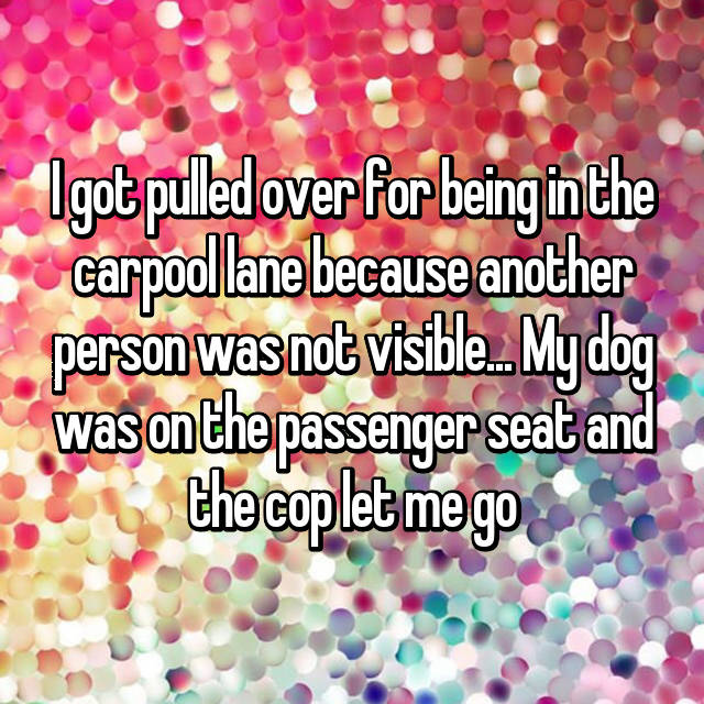 I got pulled over for being in the carpool lane because another person was not visible... My dog was on the passenger seat and the cop let me go