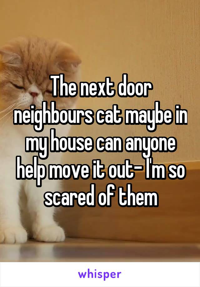 The next door neighbours cat maybe in my house can anyone help move it out- I'm so scared of them