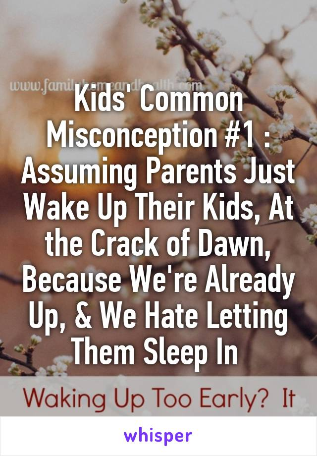 Kids' Common Misconception #1 : Assuming Parents Just Wake Up Their Kids, At the Crack of Dawn, Because We're Already Up, & We Hate Letting Them Sleep In