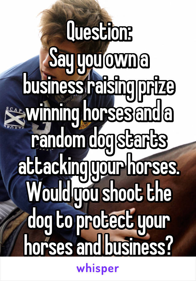 Question: Say you own a business raising prize winning horses and a random dog starts attacking your horses. Would you shoot the dog to protect your horses and business?