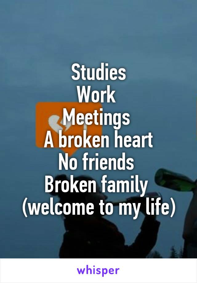 Studies Work  Meetings  A broken heart No friends  Broken family  (welcome to my life)