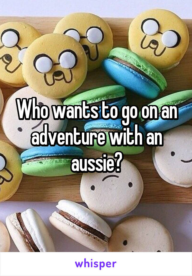 Who wants to go on an adventure with an aussie?