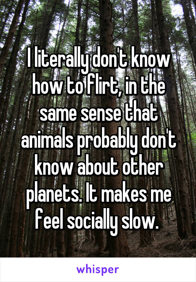 I literally don't know how to flirt, in the same sense that animals probably don't know about other planets. It makes me feel socially slow.