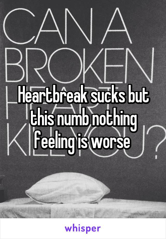Heartbreak sucks but this numb nothing feeling is worse