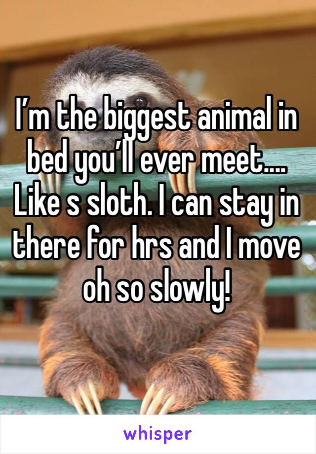 I'm the biggest animal in bed you'll ever meet.... Like s sloth. I can stay in there for hrs and I move oh so slowly!
