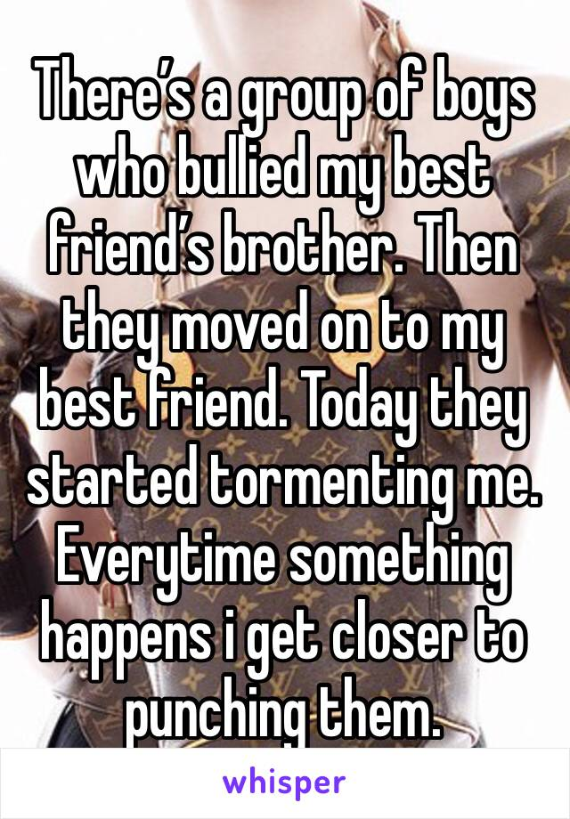 There's a group of boys who bullied my best friend's brother. Then they moved on to my best friend. Today they started tormenting me. Everytime something happens i get closer to punching them.