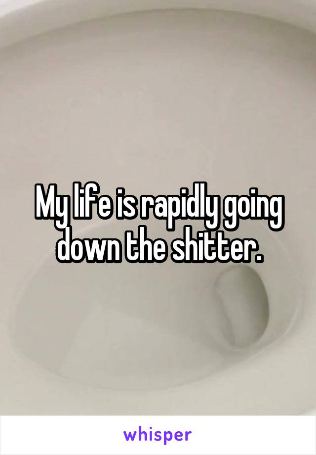My life is rapidly going down the shitter.