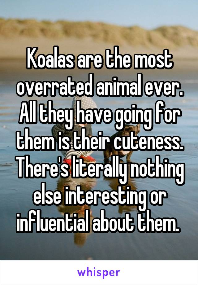 Koalas are the most overrated animal ever. All they have going for them is their cuteness. There's literally nothing else interesting or influential about them.