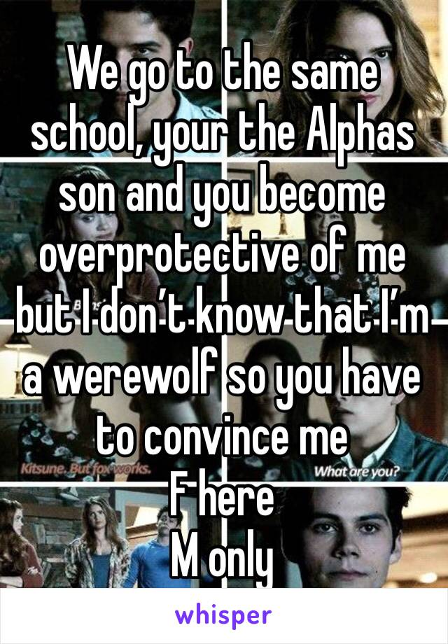 We go to the same school, your the Alphas son and you become overprotective of me but I don't know that I'm a werewolf so you have to convince me F here M only