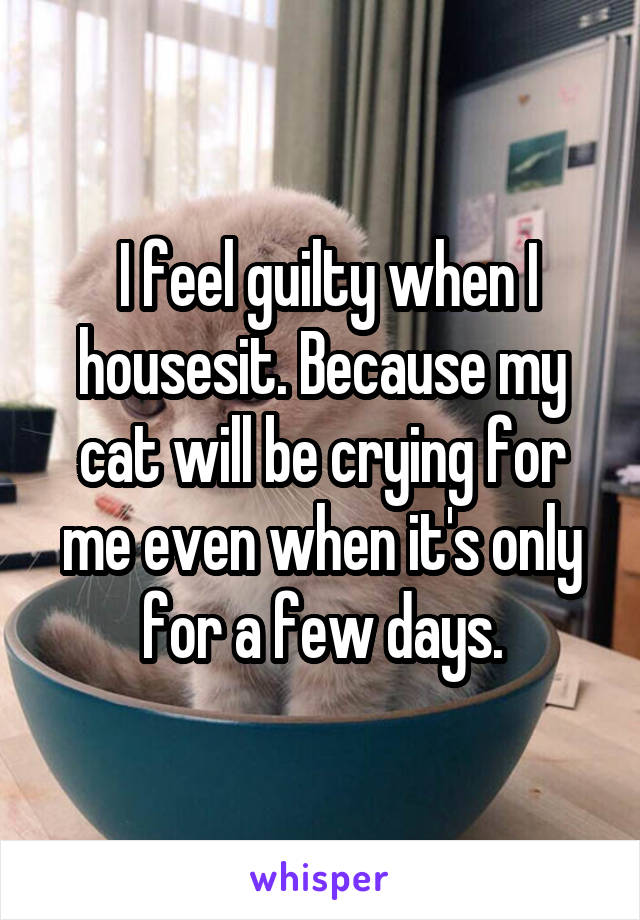 I feel guilty when I housesit. Because my cat will be crying for me even when it's only for a few days.
