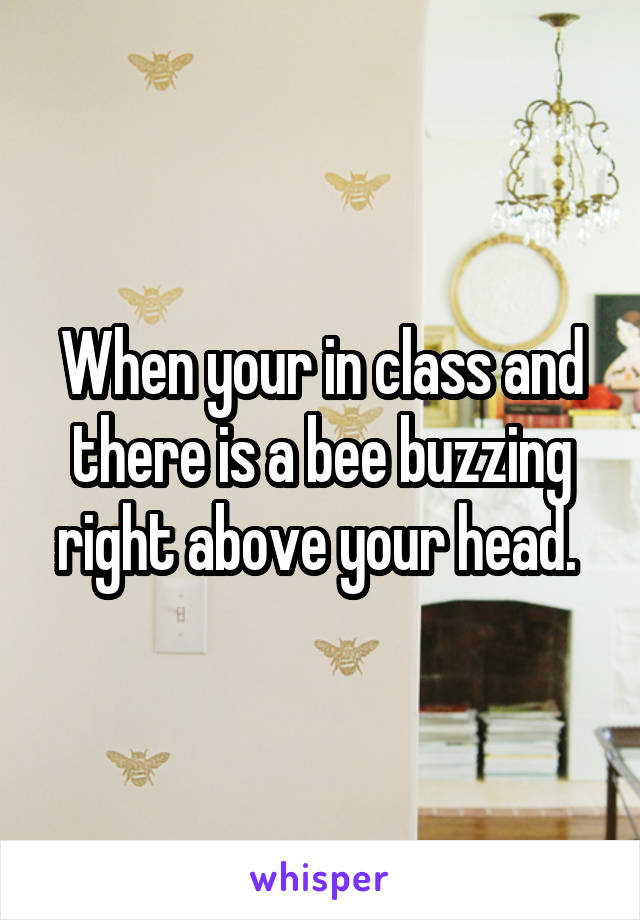 When your in class and there is a bee buzzing right above your head.