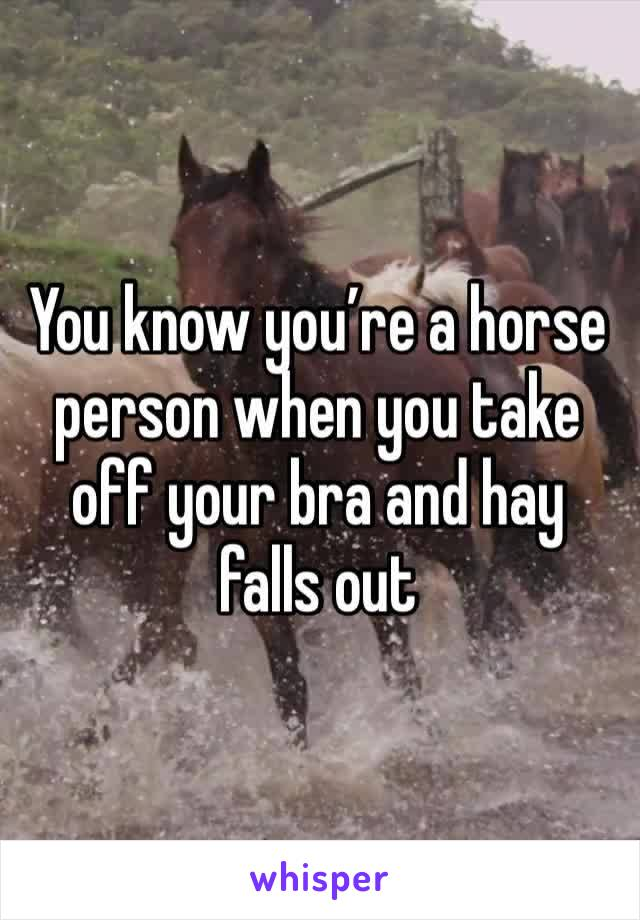 You know you're a horse person when you take off your bra and hay falls out