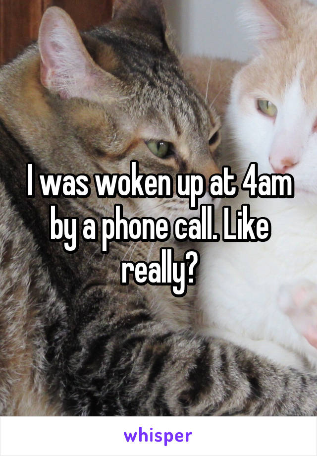 I was woken up at 4am by a phone call. Like really?