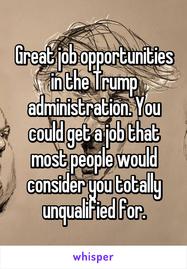 Great job opportunities in the Trump administration. You could get a job that most people would consider you totally unqualified for.