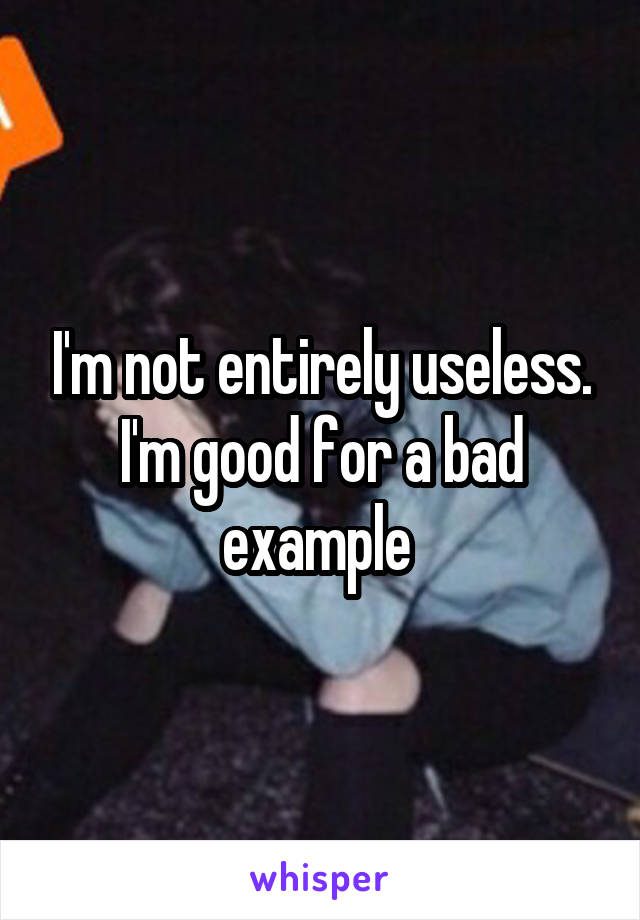 I'm not entirely useless. I'm good for a bad example