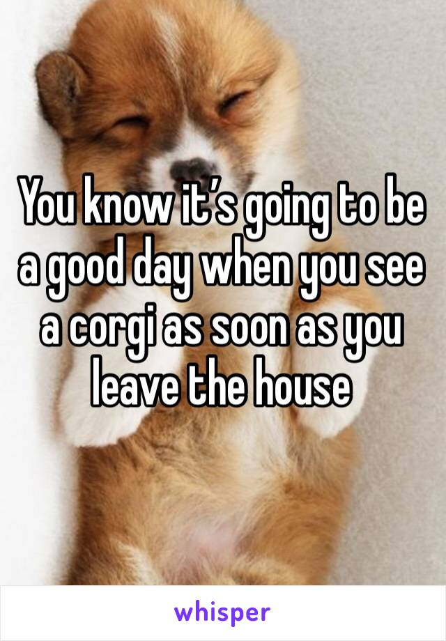You know it's going to be a good day when you see a corgi as soon as you leave the house