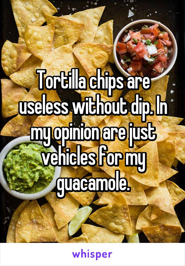 Tortilla chips are useless without dip. In my opinion are just vehicles for my guacamole.