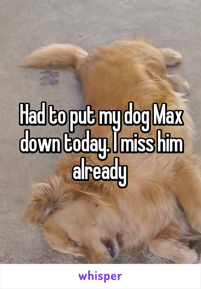 Had to put my dog Max down today. I miss him already