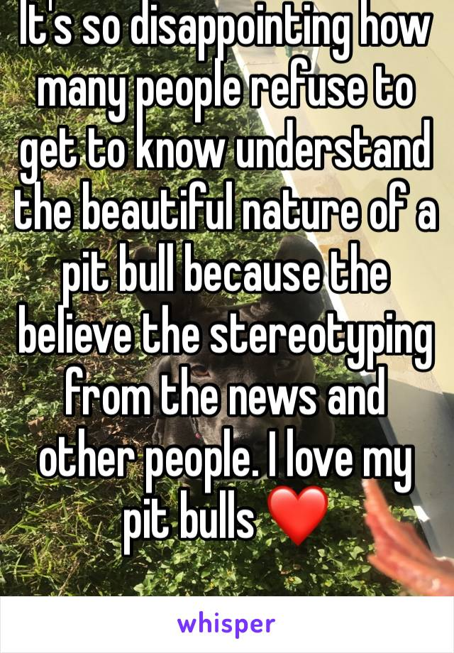It's so disappointing how many people refuse to get to know understand the beautiful nature of a pit bull because the believe the stereotyping from the news and other people. I love my pit bulls ❤️