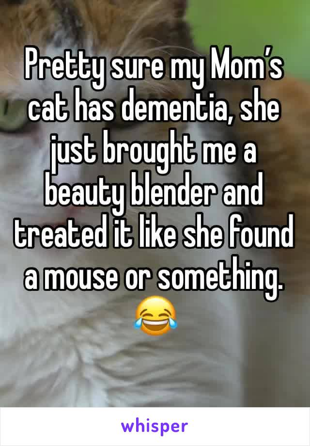 Pretty sure my Mom's cat has dementia, she just brought me a beauty blender and treated it like she found a mouse or something. 😂