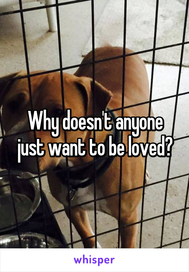 Why doesn't anyone just want to be loved?