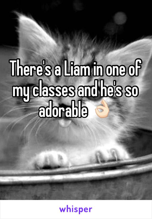 There's a Liam in one of my classes and he's so adorable 👌🏻