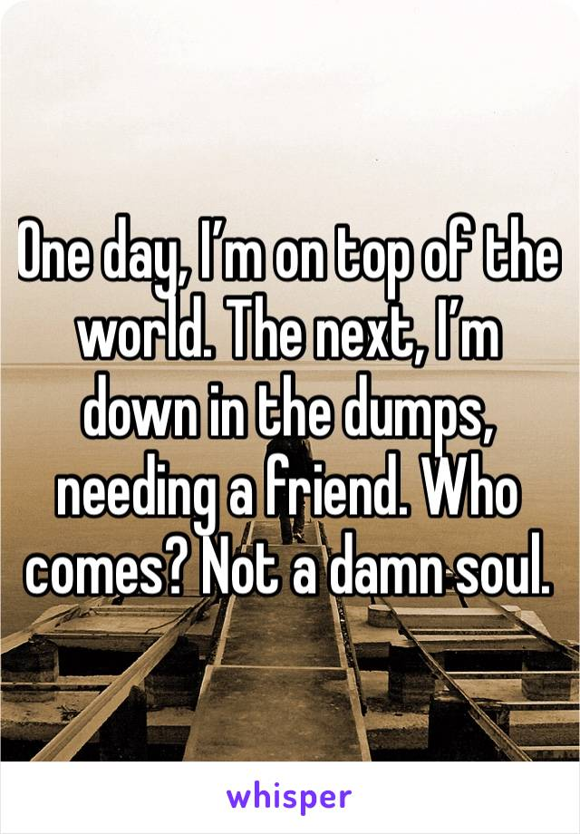 One day, I'm on top of the world. The next, I'm down in the dumps, needing a friend. Who comes? Not a damn soul.