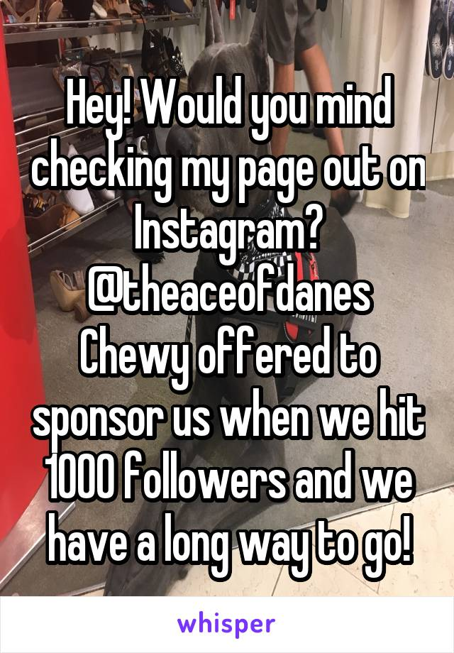 Hey! Would you mind checking my page out on Instagram? @theaceofdanes Chewy offered to sponsor us when we hit 1000 followers and we have a long way to go!