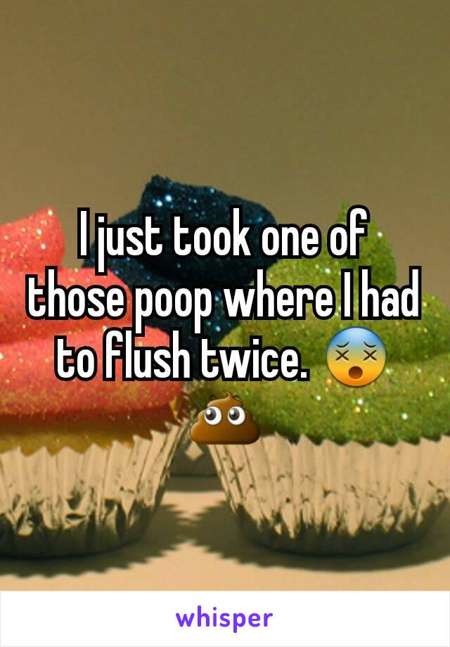I just took one of those poop where I had to flush twice. 😵💩