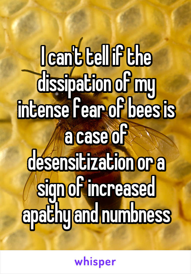 I can't tell if the dissipation of my intense fear of bees is a case of desensitization or a sign of increased apathy and numbness
