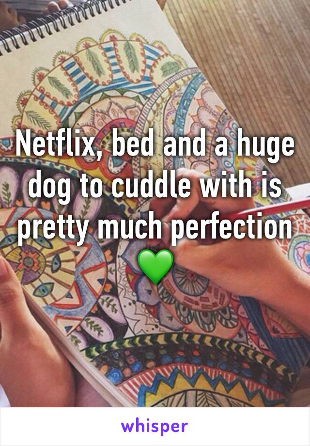 Netflix, bed and a huge dog to cuddle with is pretty much perfection 💚
