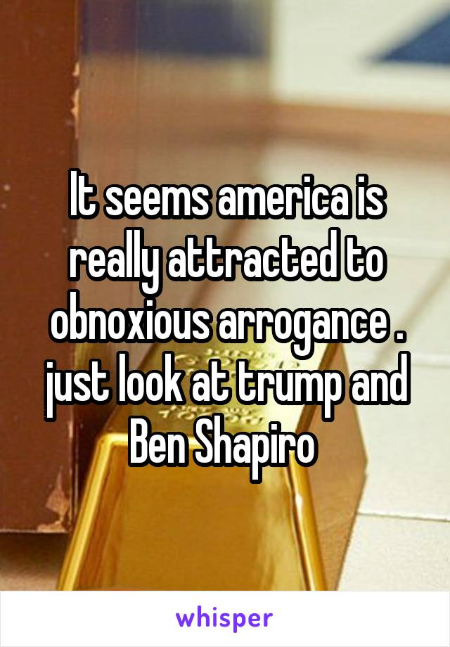 It seems america is really attracted to obnoxious arrogance . just look at trump and Ben Shapiro
