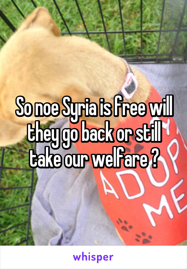 So noe Syria is free will they go back or still take our welfare ?