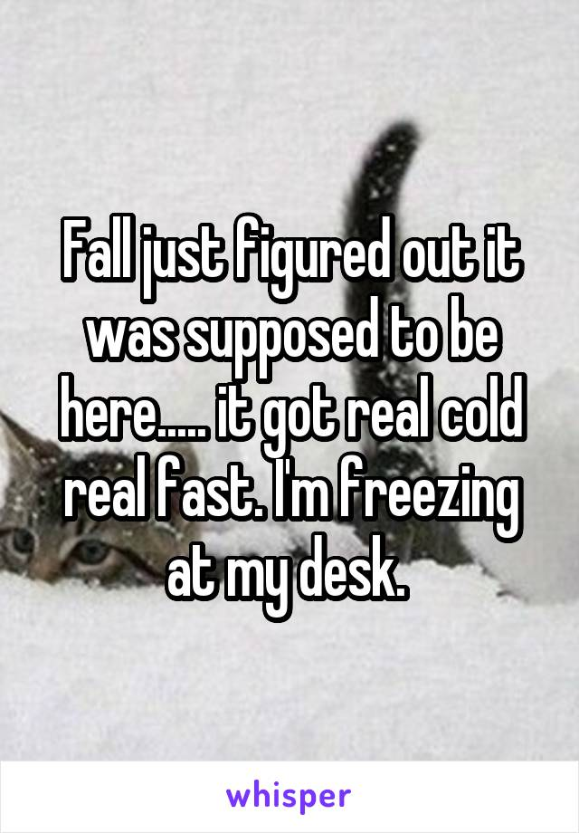 Fall just figured out it was supposed to be here..... it got real cold real fast. I'm freezing at my desk.