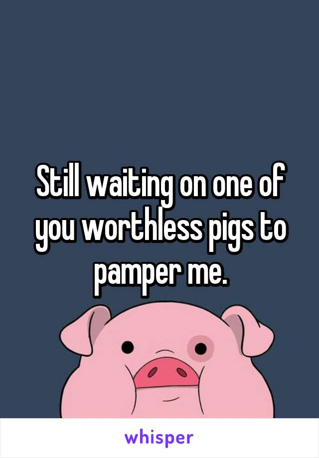 Still waiting on one of you worthless pigs to pamper me.