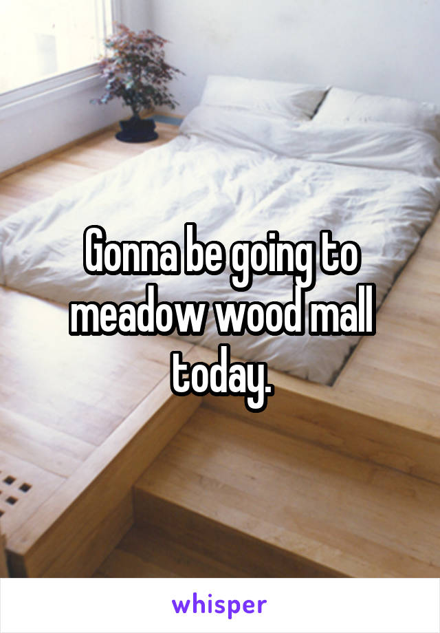 Gonna be going to meadow wood mall today.